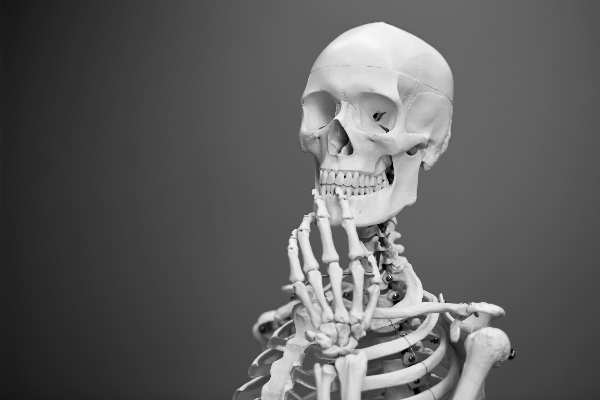 Calcium og knoglesundhed